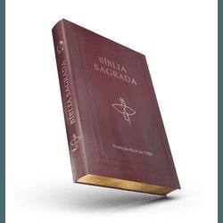 Bíblia Sagrada Letra Grande Tradução CNBB Luxo Cap... - Betânia Loja Católica