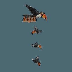 Pássaros em Madeira Tucano - Selaria Irmãos Andrade