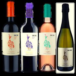 Caixa Justa Argentina - Vinho Justo