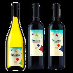 CHILE BOM NO BOLSO - Vinho Justo