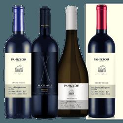 PANIZZON SERRA GAÚCHA - Vinho Justo