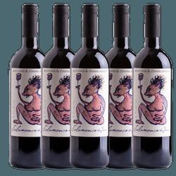 VERTICAL DE SALAMANCA DO JARAU (RARÍSSIMO) - Vinho Justo
