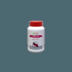 Hibiscus Diurético com Vitaminas A, C, E e Zinco 500mg 120caps