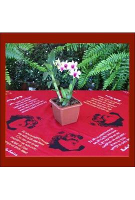 Toalha de Mesa Paulo Freire Vermelha - Tertúlia Produtos Literários
