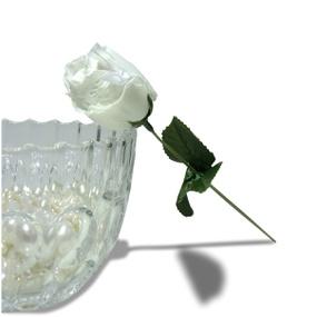 Calcinha Amore Mio (TO016) - Branco - tabue.com.br