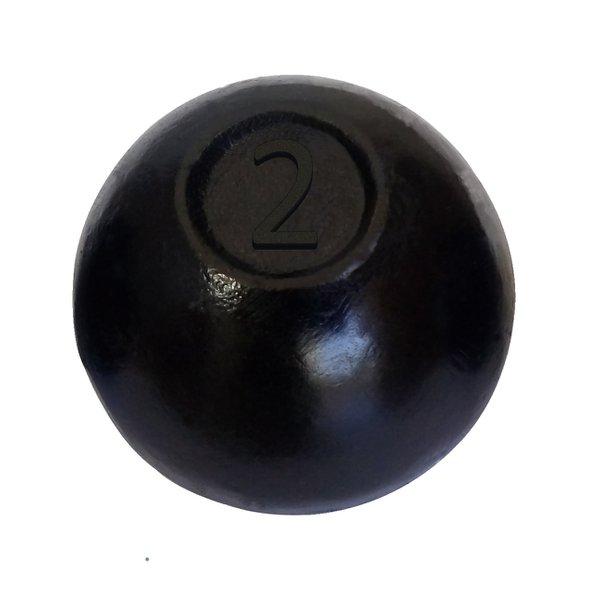 Bola de Arremesso Pintada 2kg