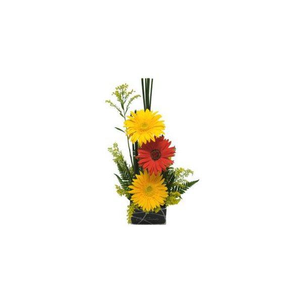 Floral de Gérberas