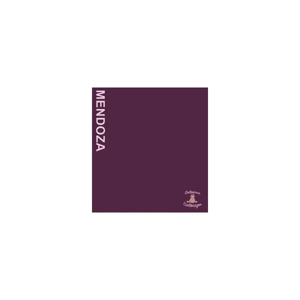 COLOR PLUS MENDONZA ( VINHO) - 1 FOLHA A3