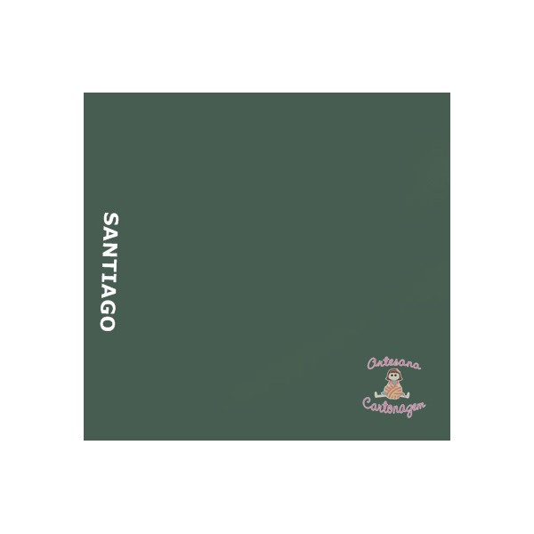 COLOR PLUS SANTIAGO ( VERDE MUSGO)- 1 FOLHA A3