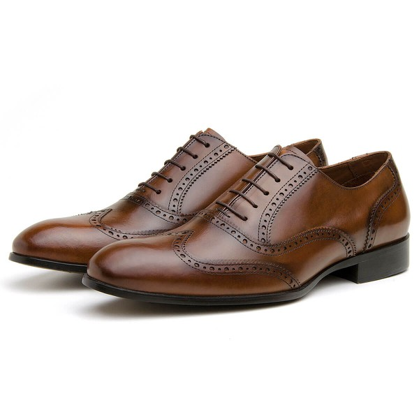 Sapato Social Masculino Oxford CNS Brogue Andrew 02 Damasco