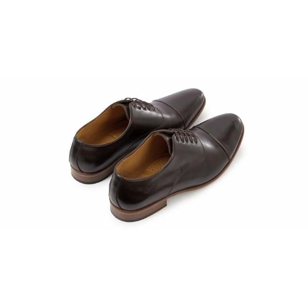 Sapato Social Masculino Oxford Benelli 43 Café