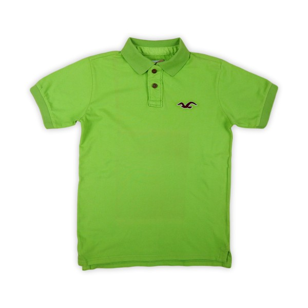 Polo Hollister