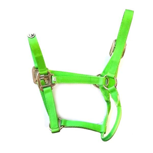 Cabresto de Nylon Boots Horse - Verde Limão