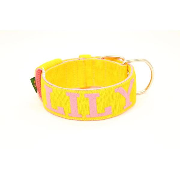 Coleira Para Cachorro Personalizada (amarelo e rosa)