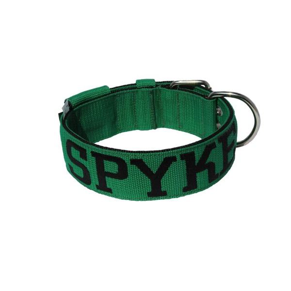 Coleira Para Cachorro Personalizada (verde e preto)