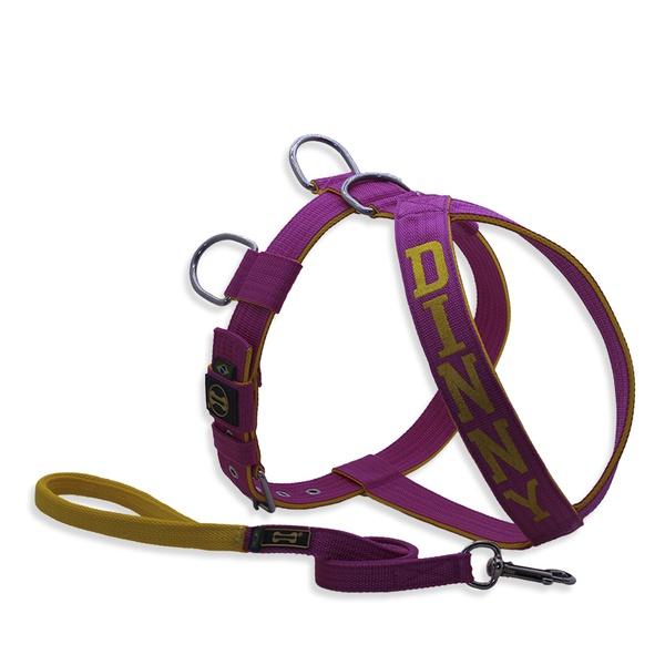 Peitoral Para Cachorro Personalizado Pink e Amarelo + Guia Curta