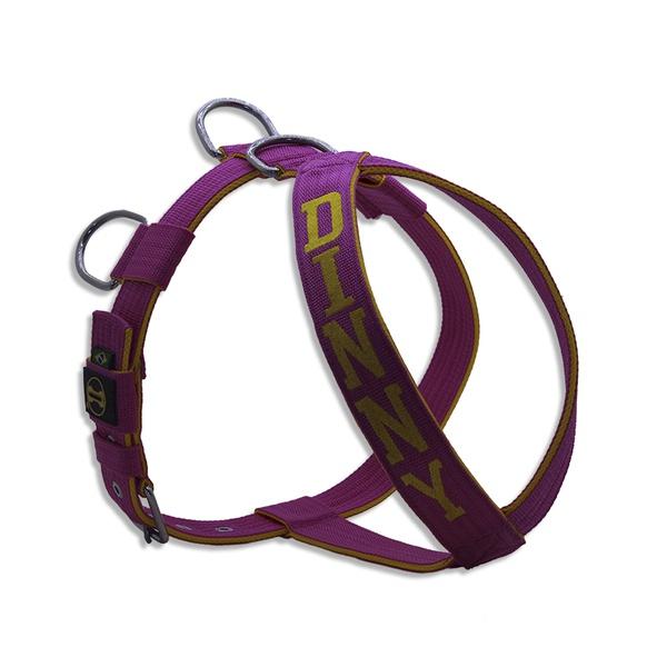 Peitoral Amorosso® Personalizado (Pink e Amarelo)