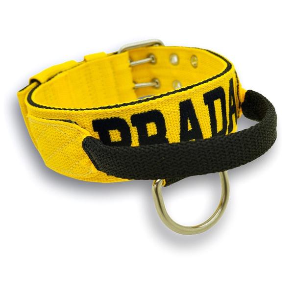 Coleira Para Cachorro Com Alça - Personalizada (amarelo e preto)