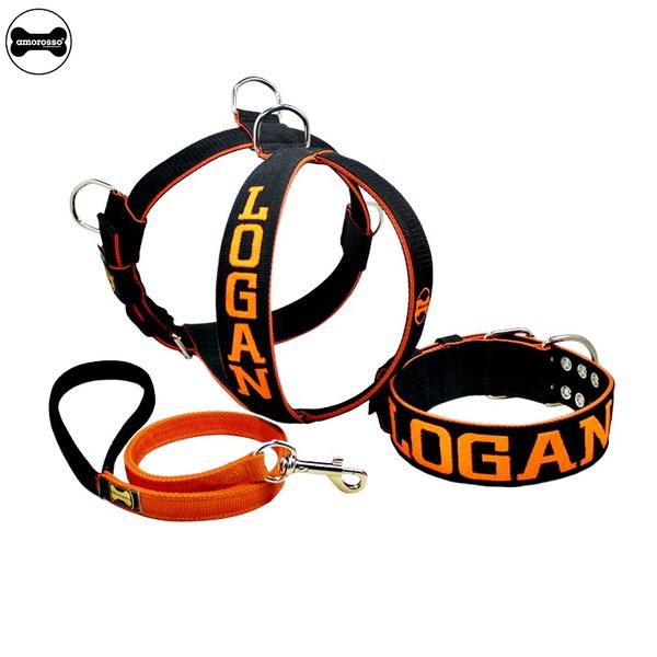Kit Personalizado Amorosso (Peitoral + Coleira + Guia) preto e laranja.