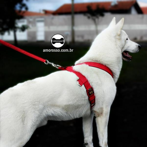 Peitoral Tradicional Amorosso® (vermelho e preto) + Guia Curta 80cm