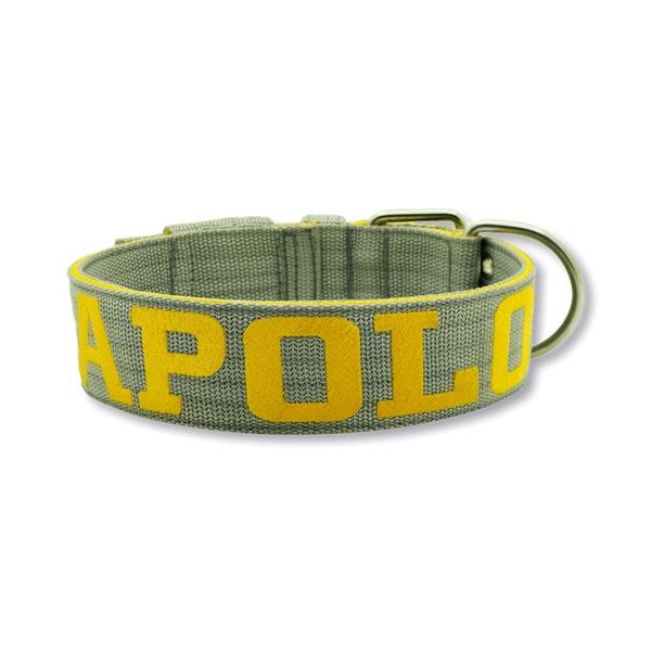 Coleira Para Cachorro Amorosso Personalizada (cinza e amarelo)