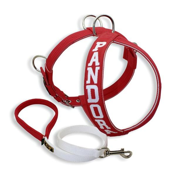 Peitoral Amorosso® Personalizado + Guia Curto (Vermelho e Branco)