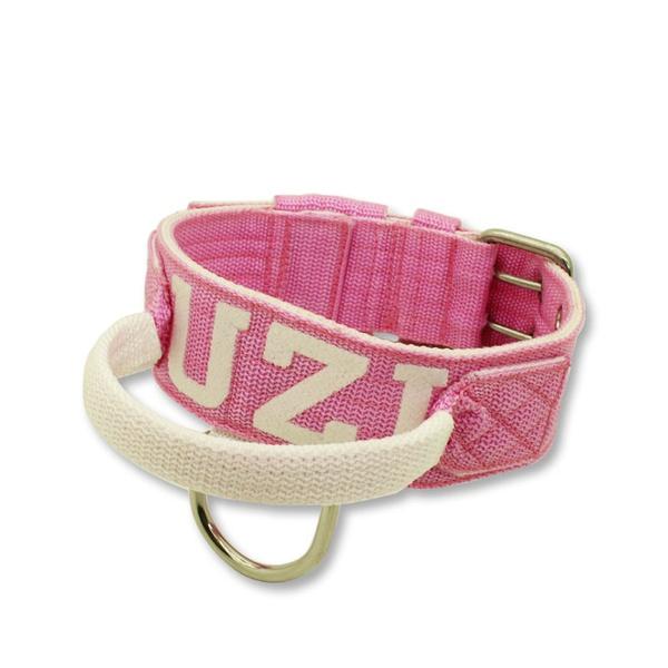 Coleira Para Cachorro Com Alça Personalizada (rosa e branco)