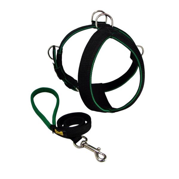 Peitoral Tradicional Amorosso® (preto e verde) + Guia Curta 80cm