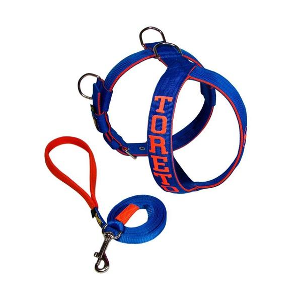 Peitoral Amorosso® Personalizado (azul e laranja) + Guia de 1,80m