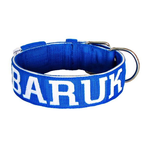 Coleira Para Cachorro Personalizada (azul e branco)