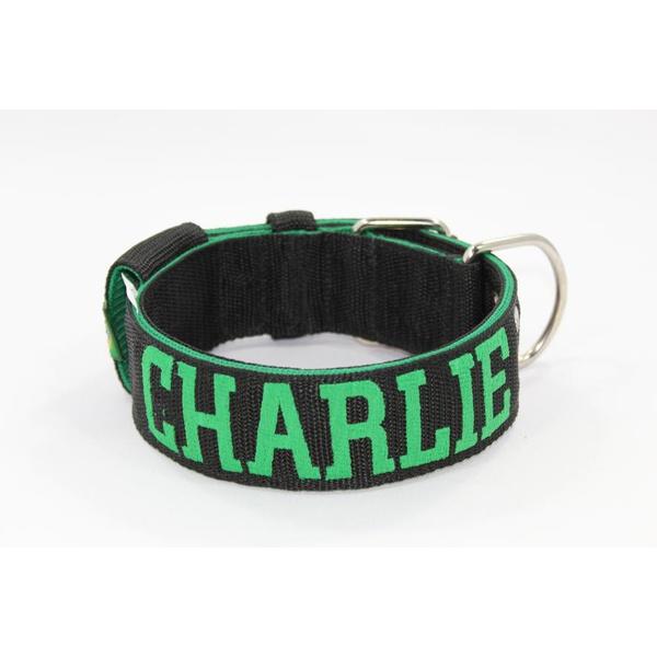 Coleira Para Cachorro Personalizada (preto e verde)