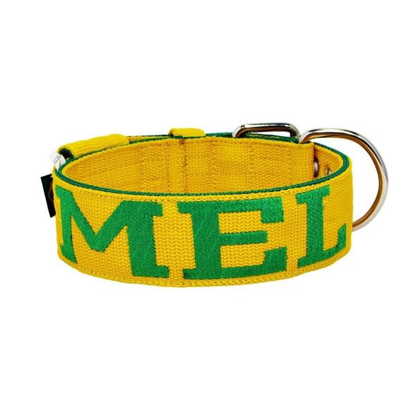 Coleira Para Cachorro Personalizada ( amarelo e verde )