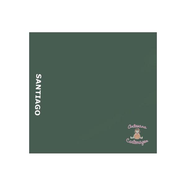 COLOR PLUS SANTIAGO ( VERDE MUSGO)- 2 FOLHAS A3