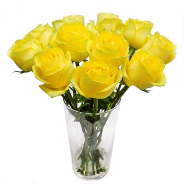 Rosas Amarelas Importadas