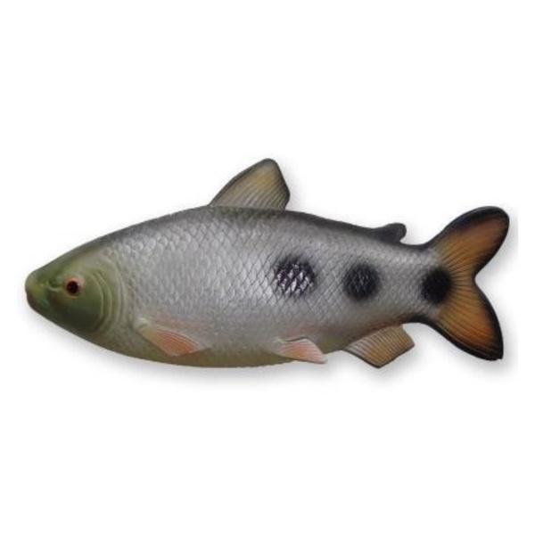 Peixe Piau