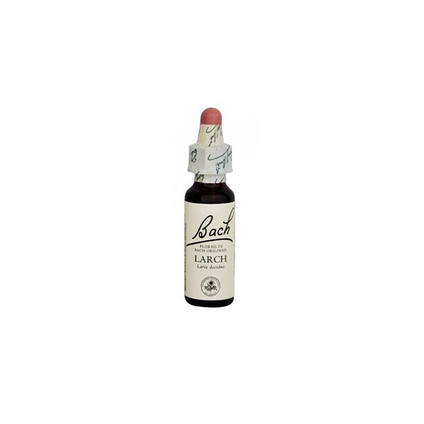 Larch Essência 10ml