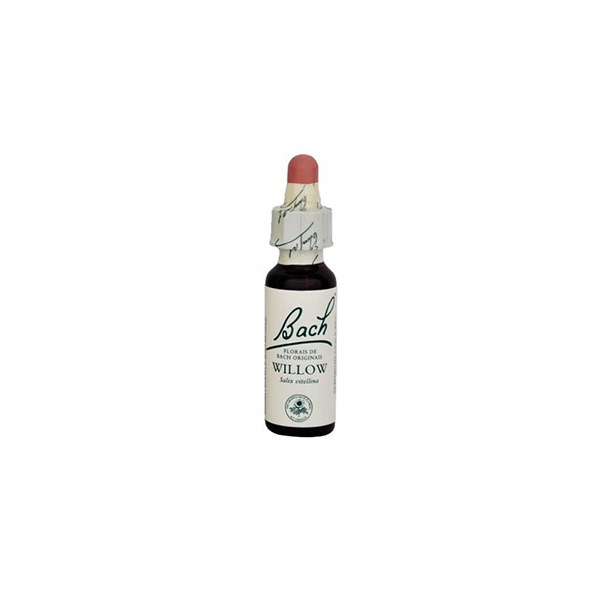 Willow Essência 10ml