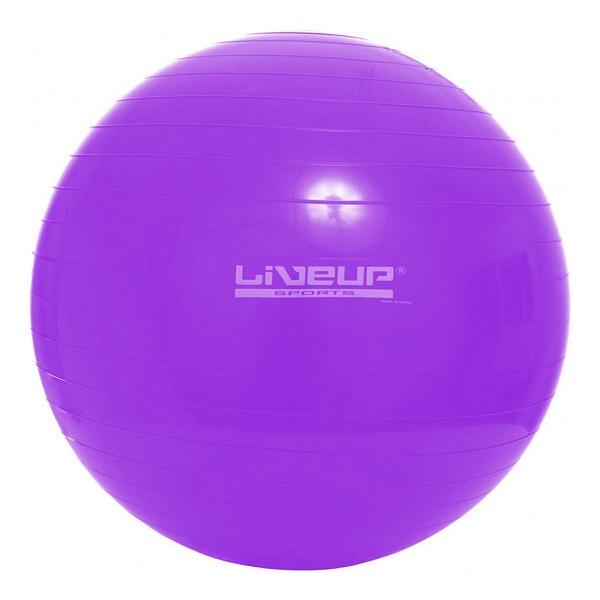 Bola Suíça de Exercícios e Pilates 55cm Live Up - Roxa
