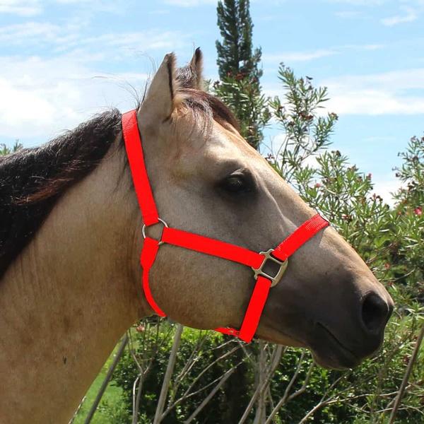 Cabresto para Cavalo Nylon Vermelho Boots Horse 3929