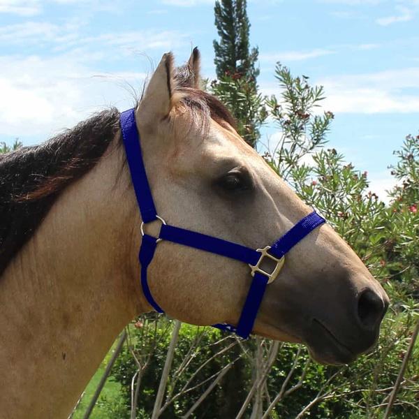 Cabresto para Cavalo Nylon Azul Marinho Boots Horse 3931