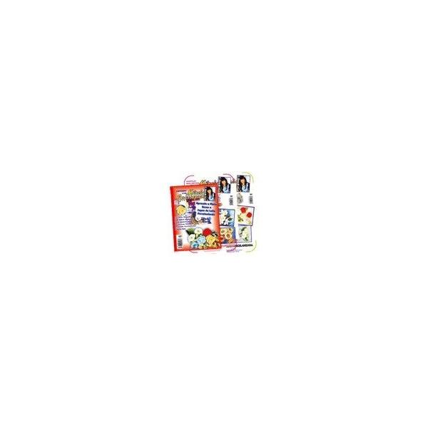 DVD Pintando Rosas e Copos de Leite + 2 Apostilas