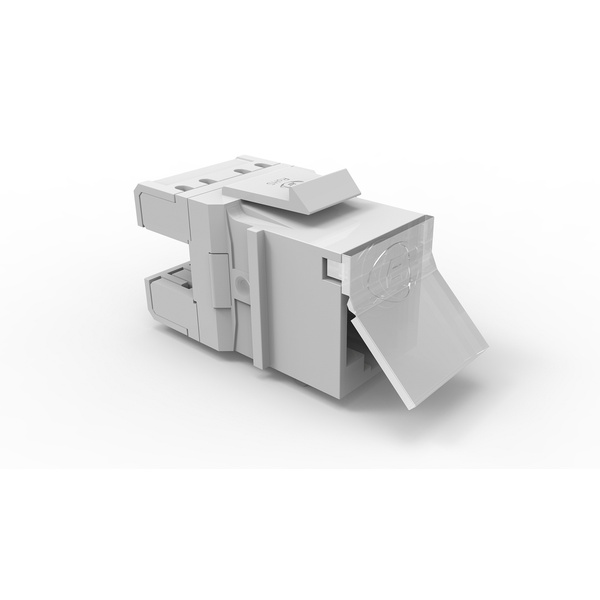 Conector femea gigalan premium cat.6 t568a/b - bege