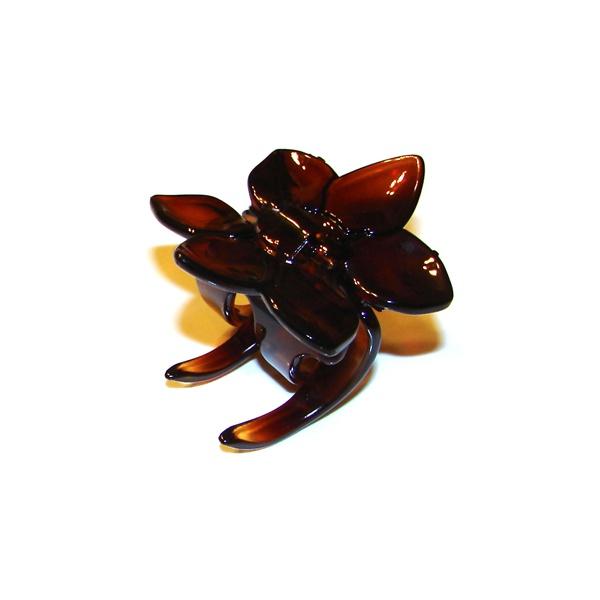 Prendedor Pequeno 4,5x4,5cm Tartaruga de Acetato Musa Kalliopi