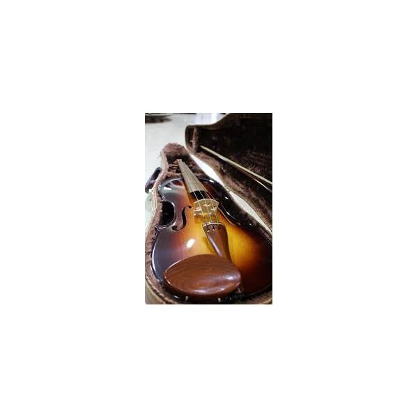 Violino Rolim Millor Sombreado