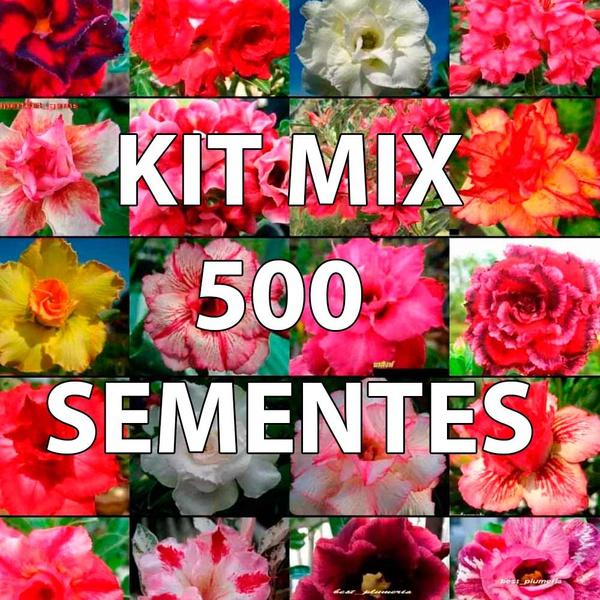 500 sementes de rosa do deserto com cores sortidas