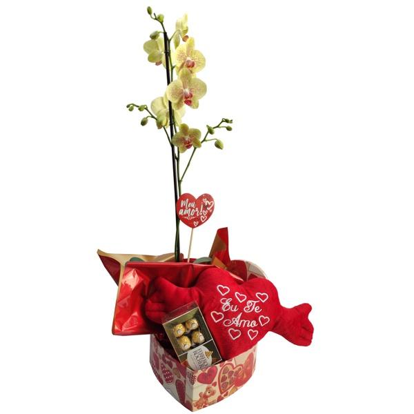 Orquídea Phalaenopsis para presente com coração de pelúcia e ferrero rocher