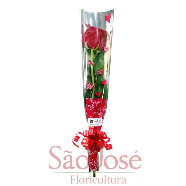 Rosa embalada para presente