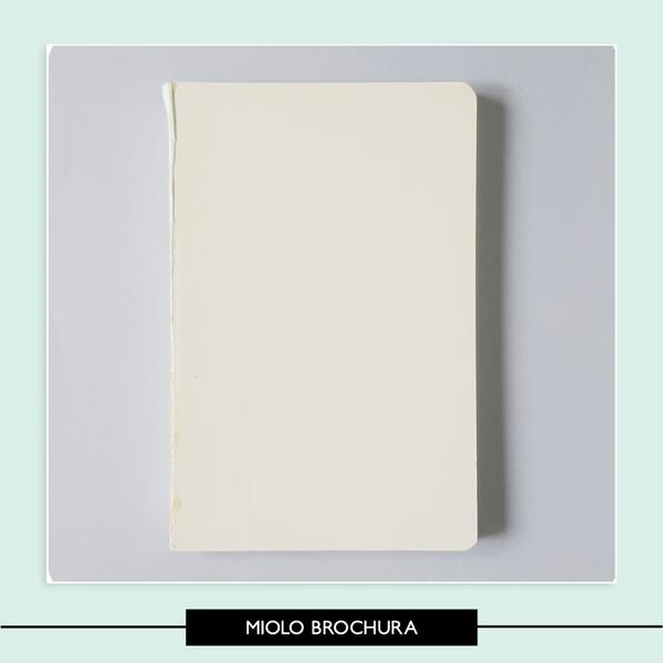 Miolo Brochura 13 5 x 20 5 cm