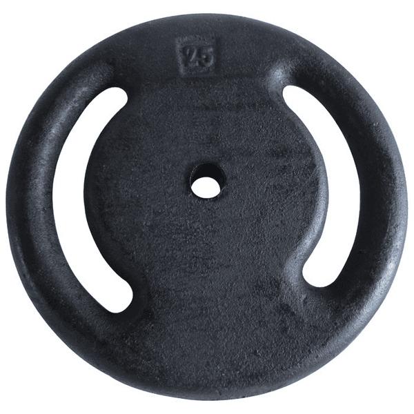 Anilha Pintada para Musculação 25 Kg