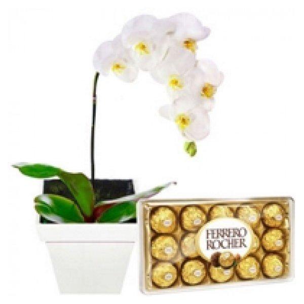 Orquídea Branca e Ferrero Rocher